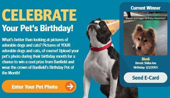 Banfield Birthday Pet Photo Contest